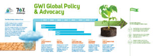Timeline - infografica per Global Water Initiative